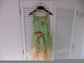 Princess Tiana dress & tiara age 3-4 yrs