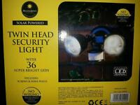 Twin head security light