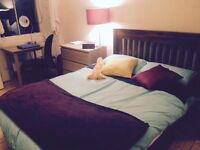 Large Double Room in Spacious Meadows Flat