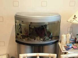 Large Aquarium and accessory for sale.size 31 inches wide by 17 high and 14 inches deep. With stand