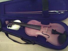 Vintage Violin ( Paesold A Schroetter ) Case/bow/shoulder rest.