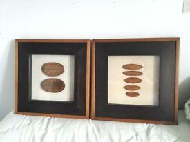 2 x JOHN LEWIS BOTANICAL SEED PICTURES