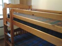 Pine bunk beds with free mattresses