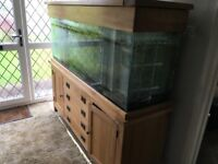Oak based fish tank with oak hood 5ft long with heaters filters lights etc cost over £1300 only £250