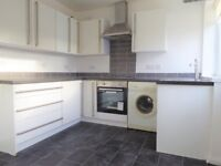 Modern THREE Bedroom House to Rent
