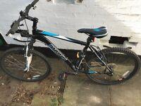 Marin 21 gear mountain bike