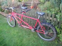 Thorn Tandem with tandem roof rack.