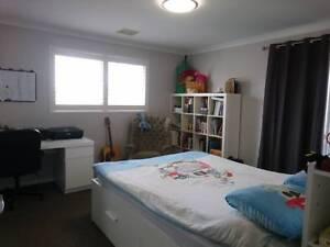 Classy Room near Train and City Victoria Park Victoria Park Area Preview