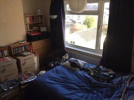 Double room to rent in professional house share in Horfield £300 pcm (not including bills)