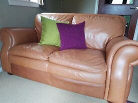Tan 2 & 3 seater sofas