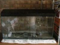 empty aquarium tank