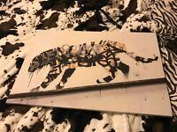 Graffiti tiger canvas