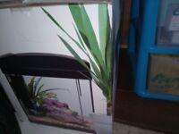 Excellent condition brand new fish tank . Looks really adorable.