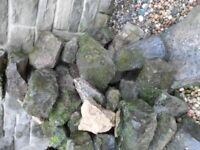 Rockery Stone, well weathered and some moss covered.