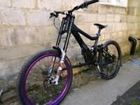 Giant glory downhill bike