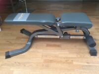 Bodymax deluxe weights bench