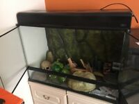 Exo Terra tank with accessories 90 x 45 x 60cm
