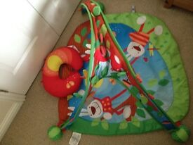 Baby chicco playmat