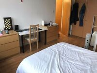 * ENSUITE AND DAZZLING DOUBLE ROOM IN ELEPHANT AND CASTLE