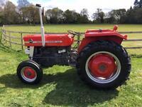 Massey Ferguson 135 Vintage Tractor Fully Restored