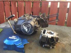 Pit bike demon engine