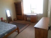 Room for 2 week let (Oct 10th - 23rd)
