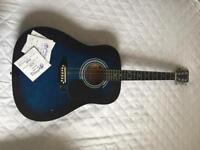 Blue Falcon acoustic guitar and brand new set of Martin & Co. Strings
