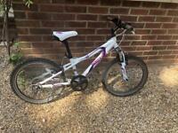 Dawes Redtail Mountain Bike
