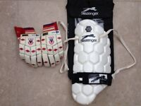 Men's Left Handed Batting Gloves and Thigh Pad