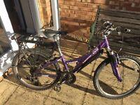 Girl's Bike Trek 220
