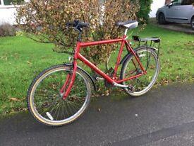 Raleigh Max Bike