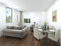 one bed modern flat to rent