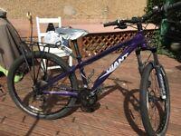 Women's XS Giant Bike for Sale