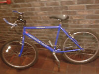 FULLY SERVICED Men Women RALEIGH 21 Gear Mountain Bike, 26 inch wheels FULLY WORKING