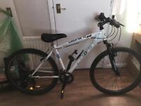 Leaopard bike
