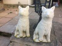 2 Concrete garden Foxes