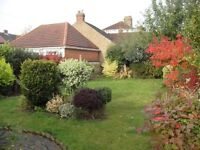 2/3 Bed Spacious Bungalow With Off Street Parking