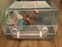 Hamster cages with accessories including seesaw, flying saucer, ball and many more