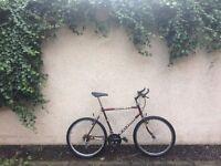 Man's Raleigh Nitro Mountain Bike