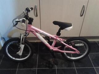 Child's pink Luna Carrera bike