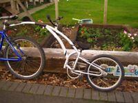Tag bike, Original Trail Bike, max rider weight 85 lbs, bracket for adult bike, flag, GWO