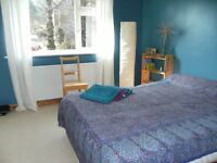 Large sunny room in Lewes close to river and Downs