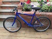 """Adult 23"""" wheel Bicycle"""