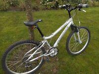 """ladies """"ridgeback"""" hybrid bike ...great cycle paths bike !!"""
