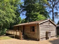 Stunning luxury wooden lodge cabin for sale on 5 star park in the New Forest.
