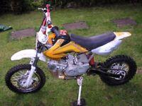 PIT BIKE 125cc LONCIN £260 QUICK SALE