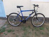 Mens Hybrid Falcon MTB Style Bike~Hardly Been used~20 inch frame~View Alphington Exeter