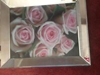 Roses Picture with Mirror Frame