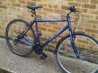Large adult frame Apollo hybrid bike bicycle good working order