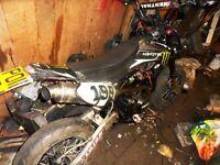 x sport 110cc pitbike